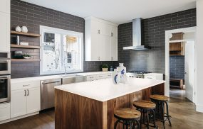 Kitchen Pictures - Nordic White